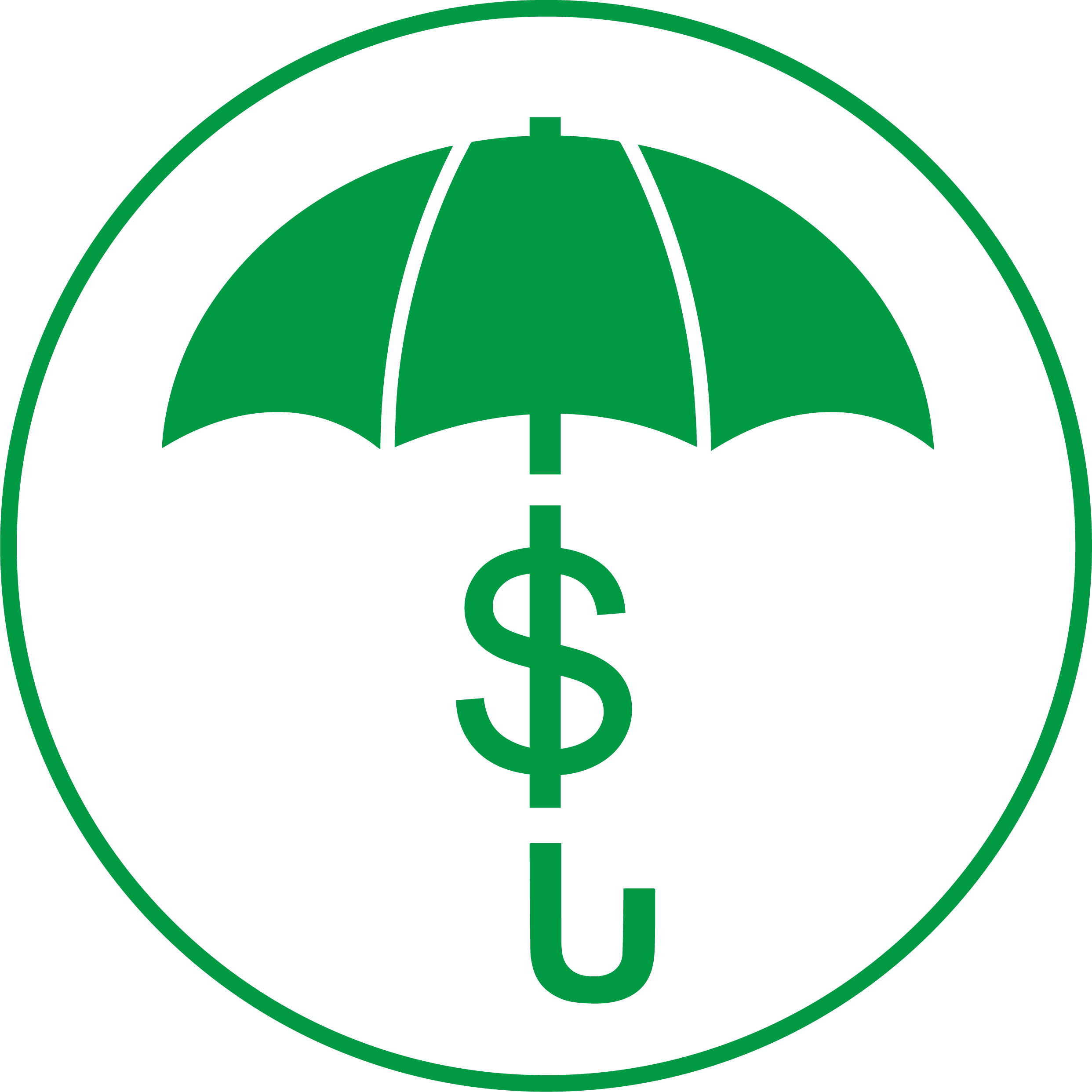 Inflation Protection Icon
