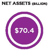 net-assets